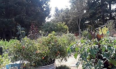 Burbank Orchards, 2