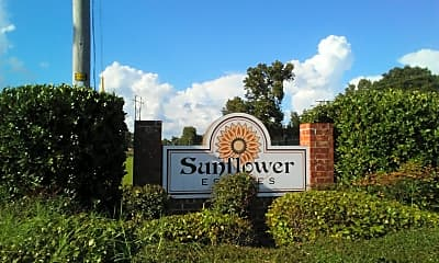 Sunflower Estates, 1