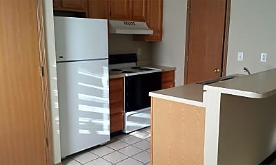 Kitchen, 307 St Joseph St, 0