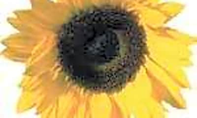 Sunflower I And II Apartments, 0