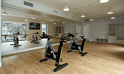 Fitness Weight Room, Prisma, 2