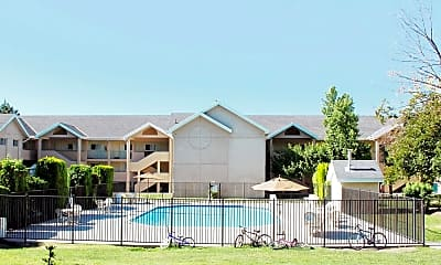 Pool, Holladay Hills, 1