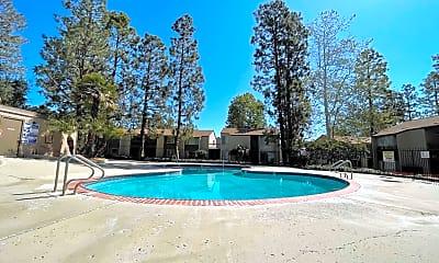 Pool, 1206 Llama Ct, 2