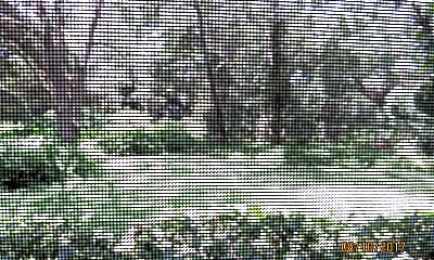 11718 Raintree Lake Ln B, 2