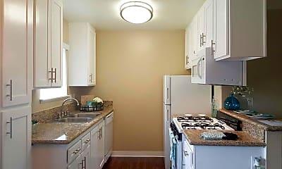 Kitchen, Shadow Mountain, 1