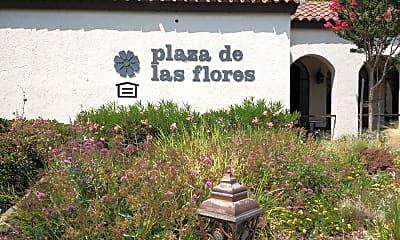 Plaza De Las Flores, 1