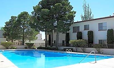 Pool, Park Ridge, 1