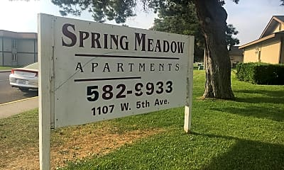 SPRING MEADOW, 1