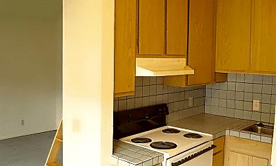 Kitchen, 470 Spencer St, 1