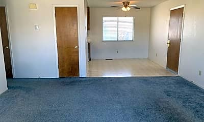 Living Room, 1347 Langley Dr, 1