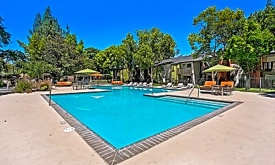 Pool, The Falls At Arden Apartments, 0