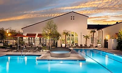 Pool, Harvest in Tracy, 0
