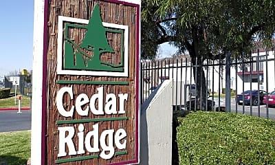 Cedar Ridge, 2