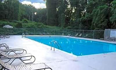 Pool, Fagan Springs Apartments, 2