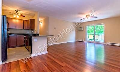 Living Room, 43 Burnham St, 0