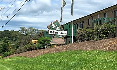 Mallard Creek, 1