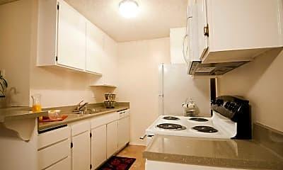 Kitchen, Tarzana Springs, 1