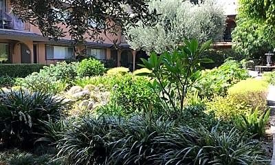 Villa Las Flores, 2