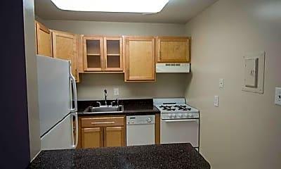 Kitchen, 99 Webster St NE, 2