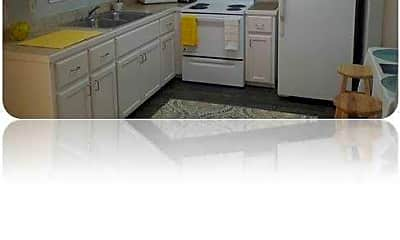 Kitchen, Palm Tree Apartments, 1