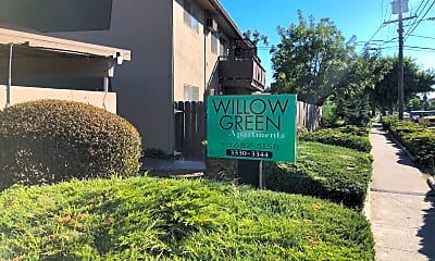Willow Green, 1