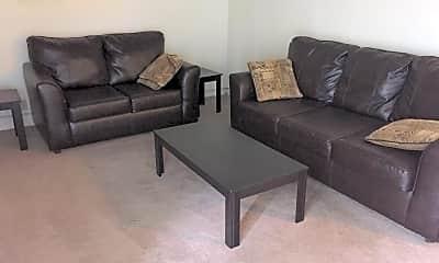 Living Room, 210 E White St, 1