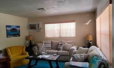 Living Room, 6 N Adams St, 1