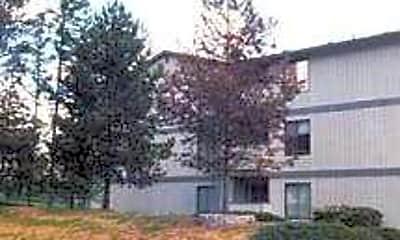 Springtree, 1