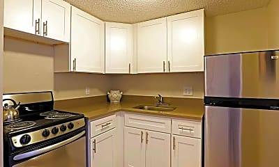 Kitchen, Lakeview Tower, 1
