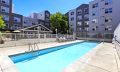 Pool, Cooper Apartments, 0