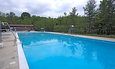 Pool, Plum Tree, 1