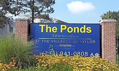 The Ponds, 1