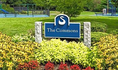 Stony Brook Commons, 2
