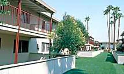 Valley Palms, 1