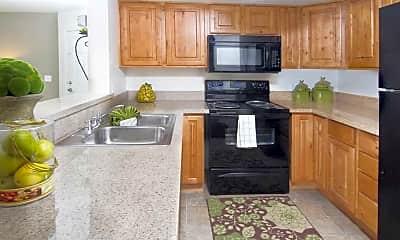 Kitchen, Promontory Point, 1