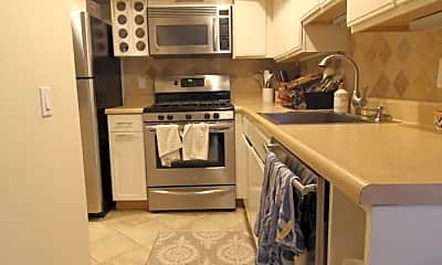 Kitchen, 103 Preston St, 1