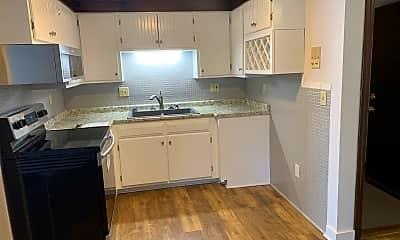 Kitchen, 5 Spring St, 2