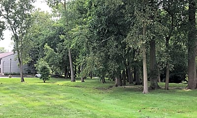 Tree Tops, 2