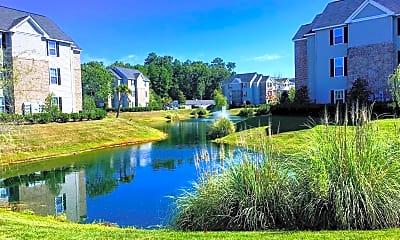Lake, Rice Creek, 1