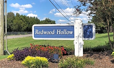 Redwood Hollow, 1
