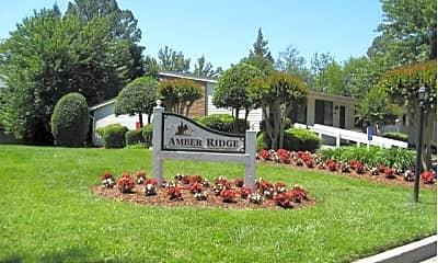 Amber Ridge Apartments, 0