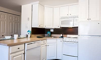Kitchen, 223 Delta St, 1