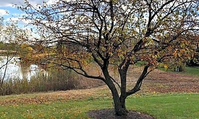 Building, 4028 Oak Tree Ln 4028, 2
