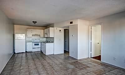 Living Room, Monte Vista, 1