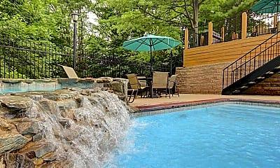 Pool, Remington, 1