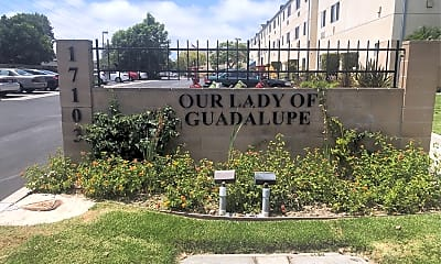 Our Lady Of Guadalupe, 1