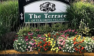 The Terrace of Elk Grove Village Apartment Rentals, 1