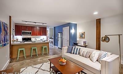 Living Room, 219 E Bank St, 0