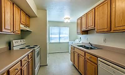 Kitchen, Heather Lake, 1