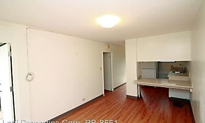 Living Room, 1060 Green St, 0